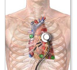 Examen du cœur. L'échographie du cœur: il montre? Méthodes d'enquête coeur