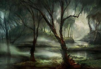 Por que o sonho de um pântano? Por sonho de cair no pântano?