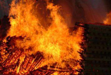 Pared de fuego: descripción, tipos, dispositivos y tipos