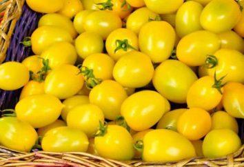 Les tomates jaunes pour l'hiver: recettes