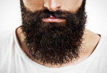 Beard nell'Islam: valore. Perché i musulmani portano la barba