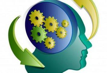 Behaviorismus in der Psychologie: Ihr Verhalten kann über Sie sagen