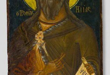 """Ícone """"O Profeta Elias"""": o que ajuda eo que se entende?"""