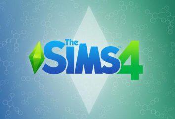 """Descrição do jogo """"The Sims 4"""". Como alterar o idioma de Inglês para Russo"""