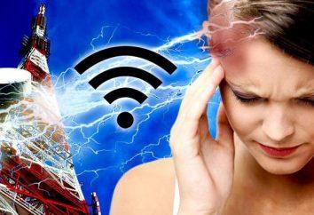 La fuente del campo electromagnético es la energía del campo electromagnético …