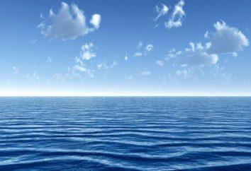 Quello che sta studiando la geografia dei continenti e degli oceani? Continenti e gli oceani – che cosa si tratta?