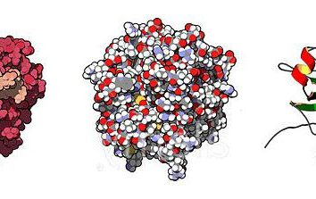 Enzym, który powoduje krzepnięcie krwi, co jest nazwa?