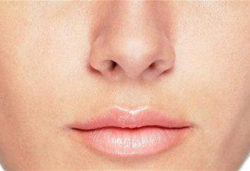 Idiom avec le mot « nez »: l'utilisation et la signification