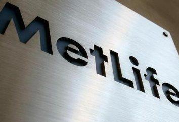 """Firma ubezpieczeniowa """"MetLife"""": opinie klientów, usług, kontaktów i opis"""