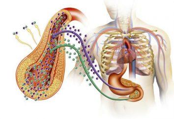 Qu'est-ce que le diabète sucré insulino-dépendant?
