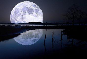 Gli scienziati hanno scoperto sulla Luna una quantità enorme di acqua