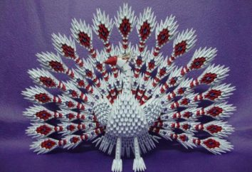 Peacock Modul origami Schaltungsbaugruppe