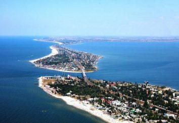 población Odessa: tamaño y composición