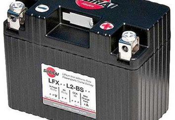 Bateria. Polaryzacja bezpośrednia i odwrotności