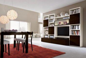 Murs modernes pour la salle: types et caractéristiques