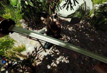 Hyde: dove trovare la katana nella foresta
