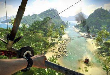 Non salvato Far Cry 3 – cosa fare?