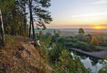 Zizdra (rzeka), region Kaluga: opis, charakterystyka, funkcje rekreacji i świata przyrody