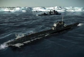 simulatore di sottomarini: un gioco serio e specifico per i lupi di mare reale