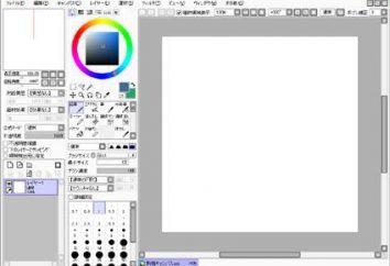 Jak narysować w Paint narzędzia Sai? opis i instrukcję obsługi programu