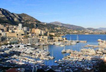 9 razões pelas quais você deve visitar Monaco este ano