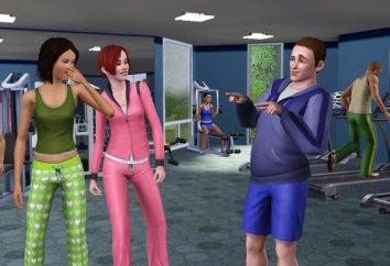 """Como atualizar o """"The Sims 4"""" (piratas) e é possível?"""