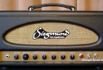 O amplificador de guitarra: os dispositivos e circuitos recursos