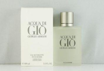 Top 10: perfumes Os melhores dos homens