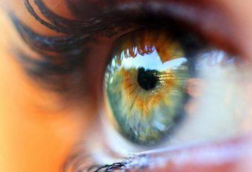 Całun w oczach: Przyczyny i leczenie. Przyczyny upośledzenia wzroku
