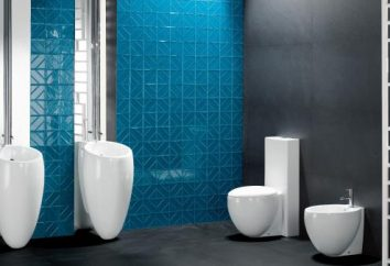 Ware – to … technologii i produkcji ceramiki sanitarnej