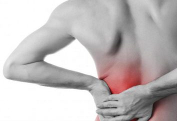 Dor nas costas e no abdômen: as causas, tratamento, sintomas