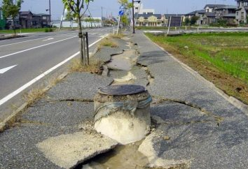 Terremoto: ciò che i sogni