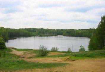Zhdanovskoye See: Beschreibung, Merkmale, Fotos