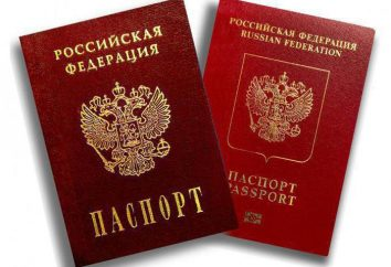 Avez-vous vu un passeport la nuit? Le livre des rêves aide à comprendre