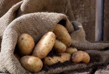 So lagern Kartoffeln im Keller: in den Netzen, Taschen, bulk