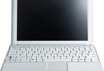 Najlepszy system operacyjny dla netbooków