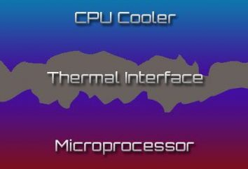 Thermal Grease CPU: co jest lepsze i dlaczego jest to konieczne?