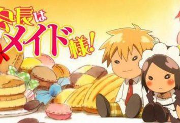 """Anime """"Presidente del Consiglio degli studenti – cameriera!"""": I personaggi e fatti interessanti"""