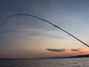 Teleskopowy pręt jest dobrym wyborem dla każdego rybaka