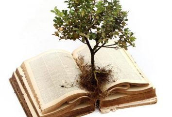 Przysłowie o wiedzę – wielka mądrość ludzi