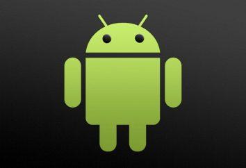 Wie Android auf ihre eigenen zu blinken?