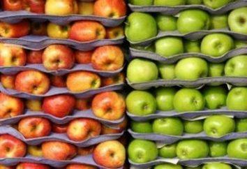Wie für den Winter Äpfel speichern: Tipps