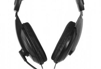 Smartbuy (słuchawki z mikrofonem): recenzje