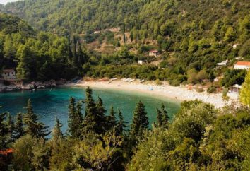 Najbardziej popularna plaża w Simeiz (Krym). Plaże Simeiza: adres, opis. Reszta w Simeiz