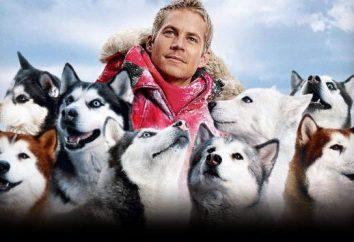 """""""Eight Below"""". Aktorzy: ludzie i psy"""