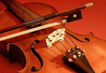 Jak określić rozmiar skrzypcach. Wymiary skrzypce wiek