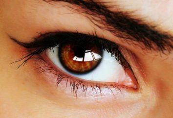 O que determina qual a cor dos seus olhos