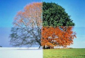 Le changement des saisons est parce que la Terre tourne autour du Soleil