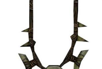 """Come trovare l'amuleto Goldura nel gioco """"Skyrim"""". Il passaggio della quest """"Forbidden Legend"""""""