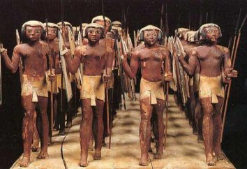 El ejército del faraón en el antiguo Egipto. ¿Cuáles son los objetivos de los faraones mantuvieron un gran ejército?